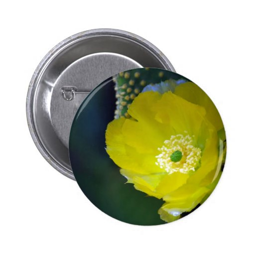 Cactus flower and meaning pinback buttons
