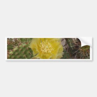 Cactus Flower Bumper Sticker