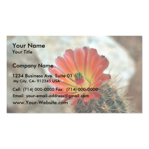 Cactus flower Double-Sided standard business cards (Pack of 100)