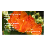 Cactus Flower Business Cards