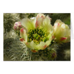 Cactus Flower Cards