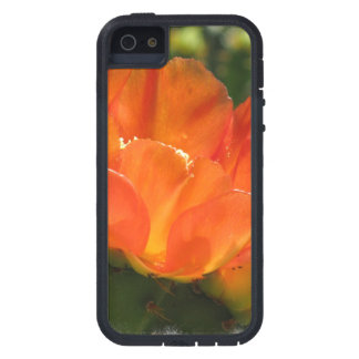 Cactus Flower iPhone 5 Covers