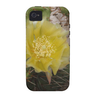 Cactus Flower iPhone 4/4S Covers
