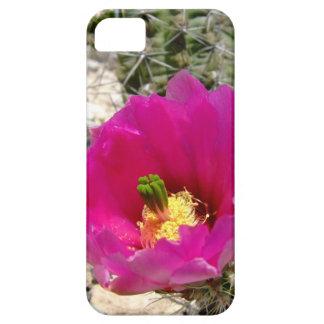 Cactus flower iphone 5 case
