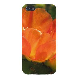 Cactus Flower Case For iPhone 5/5S