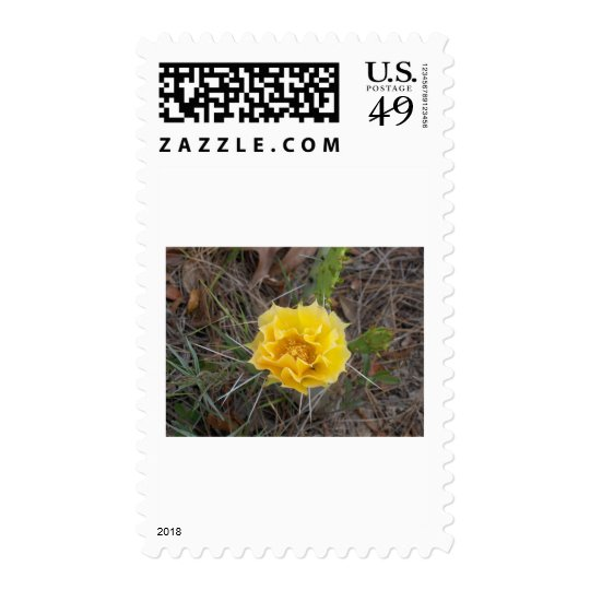 Cactus Flower Postage