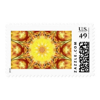 Cactus Flower Postage Stamp