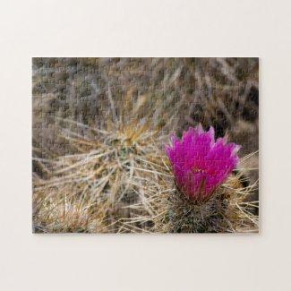 Cactus Flower Puzzle 1 puzzle