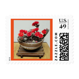 Cactus Flower Stamps Designed by The Perfect Plant