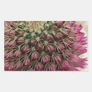Cactus Flower Stickers