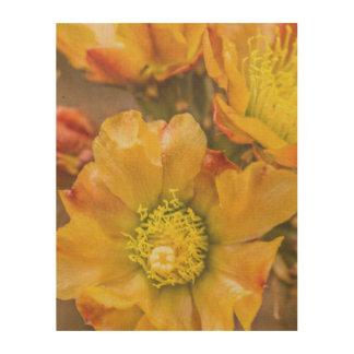 Cactus Flower Wood Canvas Print