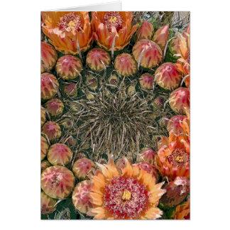 Cactus Flowers 002c Greeting Card