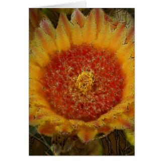 Cactus Flowers 031b Card