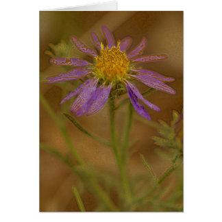 Cactus Flowers 069as Card