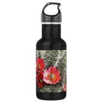 Cactus Flowers Artwork Stainless Steel Water Bottle