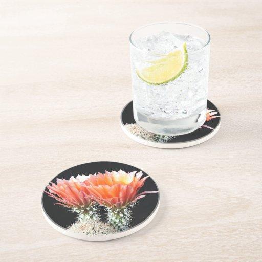 Cactus Flowers Beverage Coasters