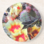 Cactus Flowers Bright and Prickly Beverage Coasters