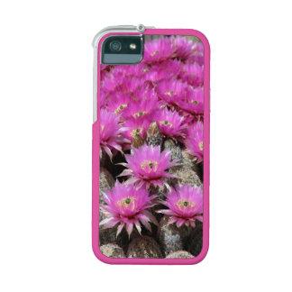 CACTUS FLOWERS iPhone 5/5S CASE