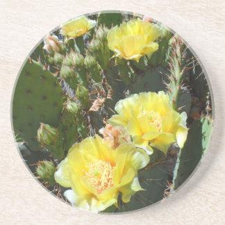 Cactus Flowers Drink Coasters