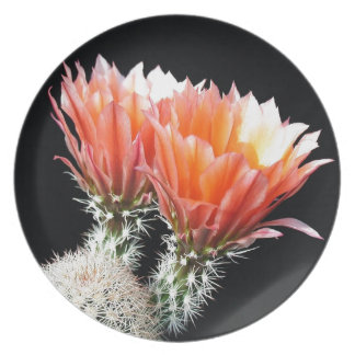 Cactus Flowers Dinner Plates