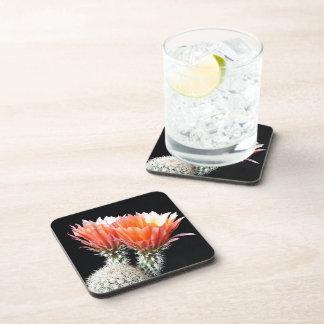 Cactus Flowers Drink Coaster