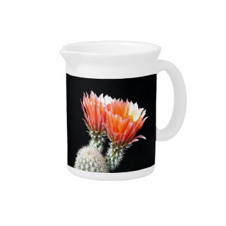 Cactus Flowers Drink Pitchers
