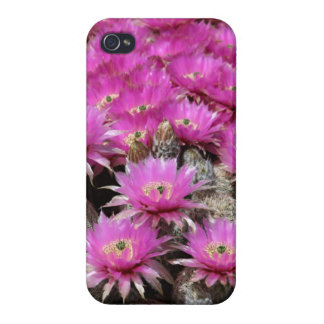 CACTUS FLOWERS iPhone 4 COVER