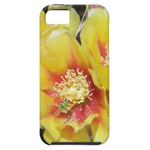 Cactus Flowers iPhone 5 Cover