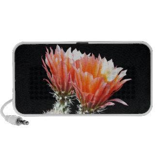 Cactus Flowers Laptop Speaker