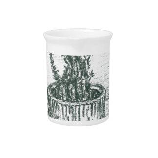 cactus, flowers, nature , plants , pot, magic drink pitchers