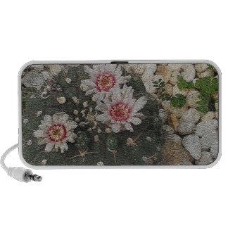Cactus Flowers Notebook Speakers