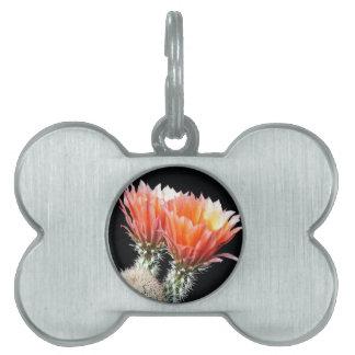 Cactus Flowers Pet ID Tag