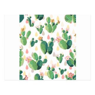 Cactus Flowers Postcard