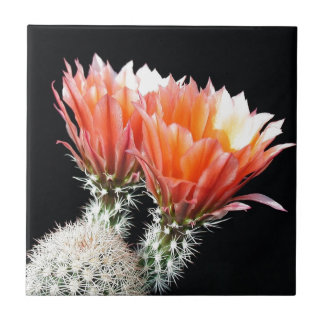 Cactus Flowers Small Square Tile