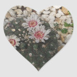 Cactus Flowers Sticker