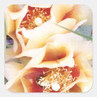Cactus Flowers Square Sticker