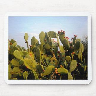 Cactus fructífero alfombrilla de raton