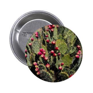 Cactus fructífero del higo chumbo, desierto de Son Pins