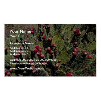 Cactus fructífero del higo chumbo, desierto de tarjetas de visita