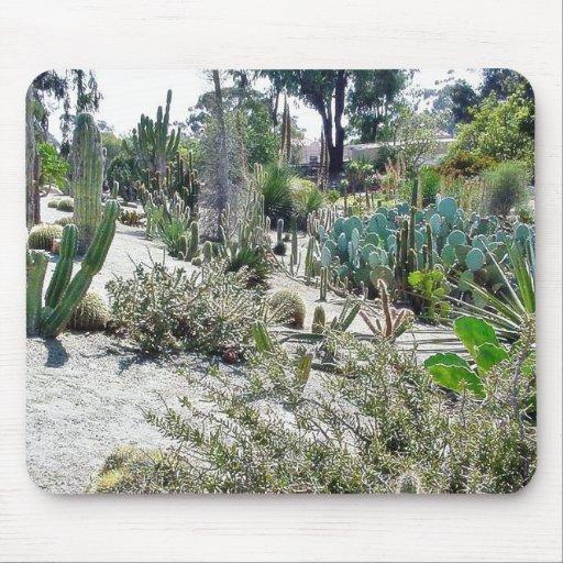 Cactus Garden At Balboa Park Mousepad
