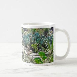 Cactus Garden At Balboa Park Coffee Mugs