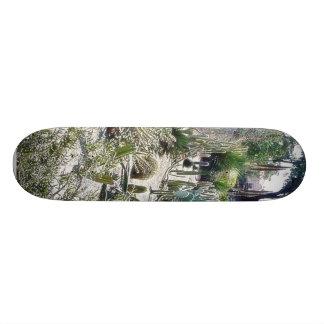 Cactus Garden At Balboa Park Skateboard Deck