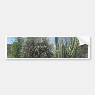 Cactus Garden Car Bumper Sticker