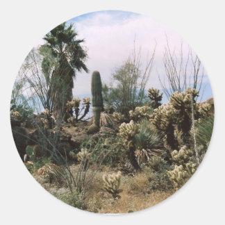 Cactus Garden Classic Round Sticker