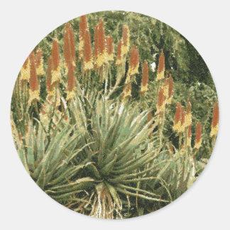 Cactus Garden Drawing Classic Round Sticker