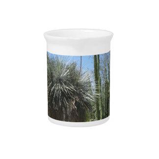 Cactus Garden Drink Pitchers