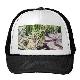 Cactus Garden Trucker Hat