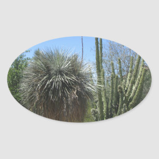 Cactus Garden Oval Sticker