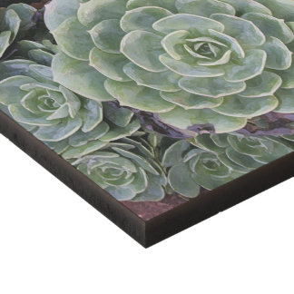 Cactus Garden Panel Wall Art
