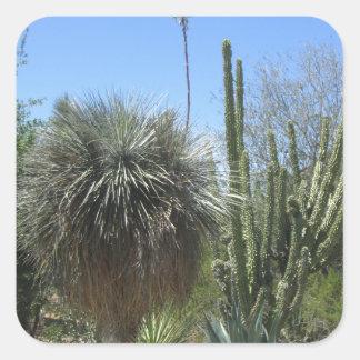 Cactus Garden Square Sticker